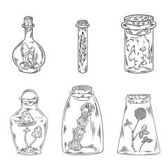 Boho bottles black and white doodles set. Vector image