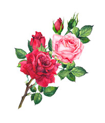 Red and pink roses bouquet. Isolated watercolor