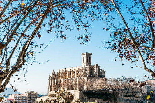 view of Collegiate Basilica of Santa Maria Seu in Manresa city in catalunya region in Spain, with trees and clear blue sky during sunny autumn day