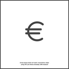 Vector image of the euro sign on gray background. Flat image euro icon on white isolated background.