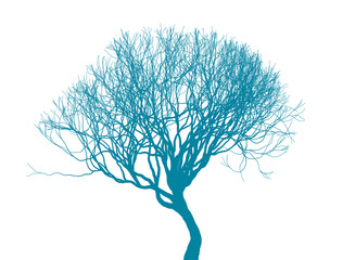 Leafless tree silhouette on white background. Fine detailed realistic illustration. Isolated design element. EPS10