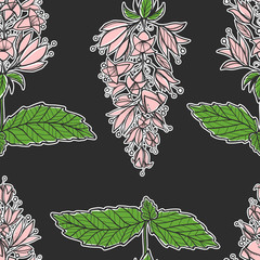 Seamless texture with pink mint flowers. Repeating pattern. Can be used as wallpaper, desktop, wrapping, fabric or background for your blog, covers, cards.