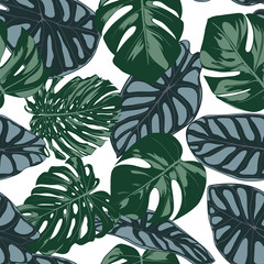 Vector Tropic Seamless Pattern. Philodendron and Alocasia Leaves. Hand Drawn Jungle Foliage in Watercolor Style. Exotic Background. Seamless Tropic Leaf for Textile, Cloth, Fabric, Decoration, Paper.
