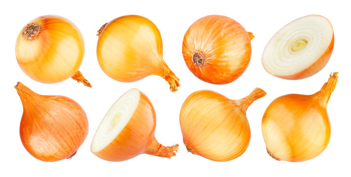 Isolated onion, whole and half of ripe onion on white background