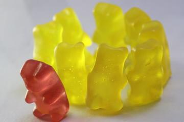 prejudiced jelly bears