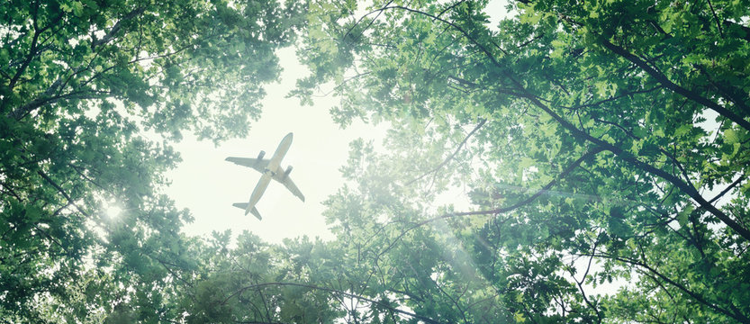 Eco-friendly air transport concept. The plane flies in the sky against the background of green trees. Environmental pollution. Harmful emissions