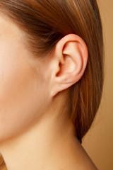 Fototapeta premium Szczegół głowy z żeńskiego ludzkiego ucha i włosów z bliska
