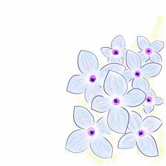 SHINY FLOWERS