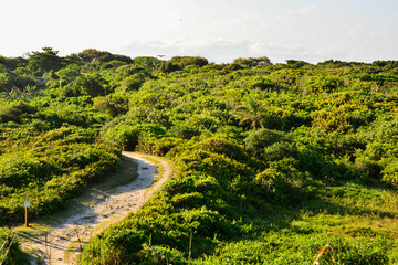 Morro na Ilha do Mel