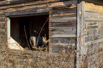 abandoned house without window