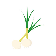 Onion icon on white background for graphic and web design, Modern simple vector sign. Internet concept. Trendy symbol for website design web button or mobile app