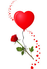 Beautiful bud of red rose on long stem and heart balloon