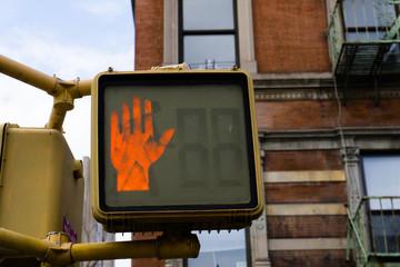 'Don't walk' pedestrian traffic light - New York City, USA