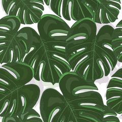 Tropical colorful monstera leaves background. Hand drawn tropic leaf repeated pattern