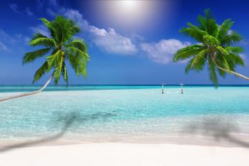 Traumstrand in den Tropen mit türkisem Meer, Kokosnusspalmen und feinem Sand