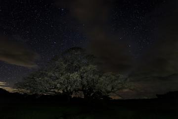 Night photography near Santibanez el Bajo. Extremadura. Spain.