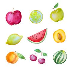 Watercolor hand drawn fruits