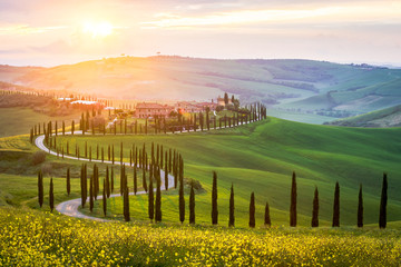 Typical landscape in Tuscany - winding road lined with cypress trees in the green meadows and fields. Sunset in Italy.