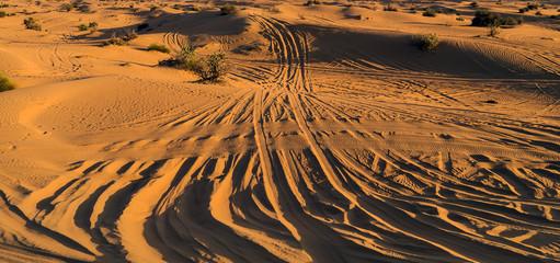 Desert sand dunes road Safari