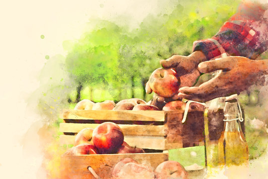 Abstract colorful holding apple fruits on watercolor illustration painting background.