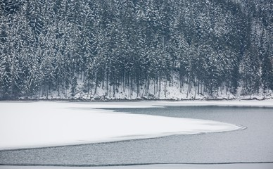 winter landscape with snow covered pine trees at a lake