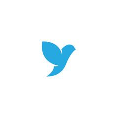 Bird logo vector design template