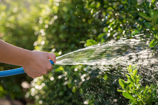 pour water to garden by rubber hose