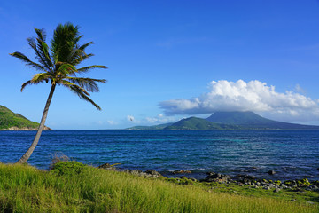 Day view of the Nevis Peak volcano under a palm tree across the Caribbean Sea from St Kitts
