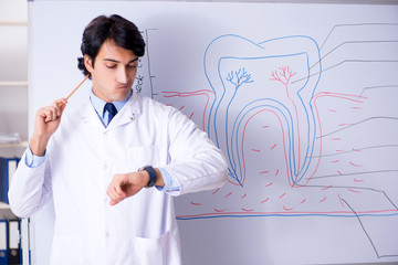 Young handsome dentist in front of the whiteboard