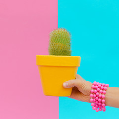 Hand with stylish accessories holds cactus. Candy minimal colorful concept art