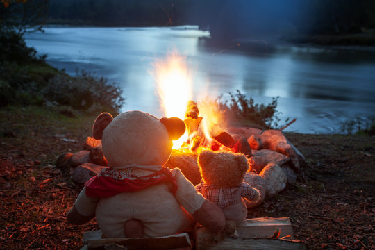 Zwei Teddybären sitzen verträumt am Lagerfeuer