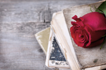 red rose and old books