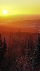 Alaska's Home