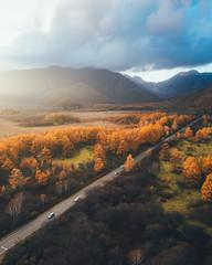 ドローン/空撮 日光の紅葉 秋の戦場ヶ原 Aerial View of Nikko in Autumn Colors, Japan