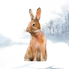 Fototapete - Wild hare in a winter wonderland painted by watercolor vector