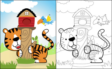 coloring book or page with funny tiger cartoon and little bird on blue sky background