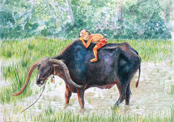 water color paiting illustration on canvas - thai countryside life with kids and buffalo on rice field