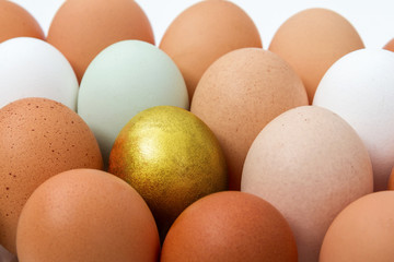 Colorful chicken eggs with golden egg