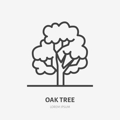 Oak tree flat line icon. Vector thin sign of park plant, ecology logo. Nature illustration, forest symbol