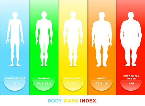 Body mass index vector illustration. Silhouettes with different obesity degrees
