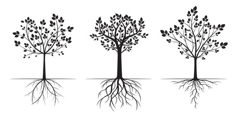 Black Trees with Leaves. Vector Illustration.