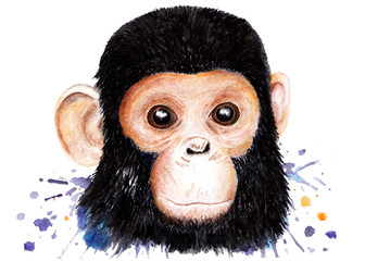 Portrait of a chimpanzee. Watercolor illustration.
