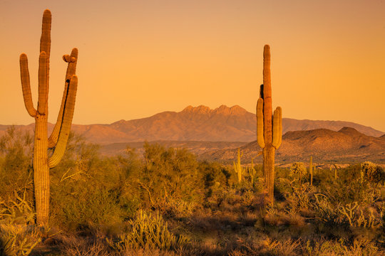 The Arizona desert mountains turn a deep reddish, orange and purple hue as the sun sets and the sky turns a soft peachy orange. Landscape photos of the desert at sunset shows a quiet and solitude
