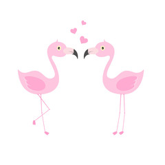 Pink flamingo couple in love. Exotic lovely birds.