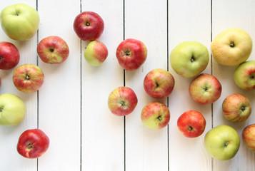 verschiedene Äpfel Apfel Band Banner große kleine Sorten Arten