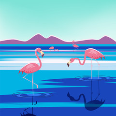 Vector illustration of pink flamingos in the lake at sunset, isolated