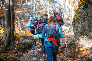Group of hikers walking through the mountain trail, trekking together