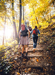 Fototapeta Group of friends with backpacks trekking together and climbing in forest obraz
