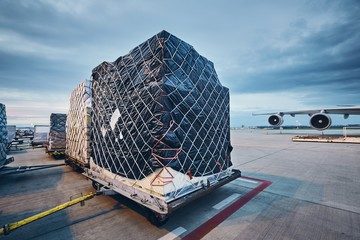 Fototapeta Loading cargo to airplane