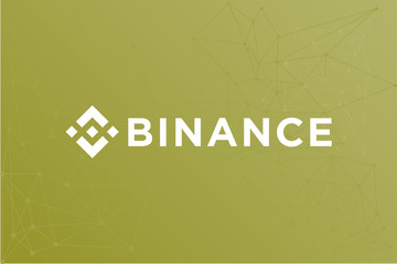 Binance BNB cryptocurrency vector symbol network illustration